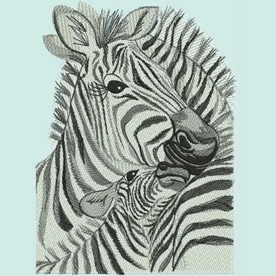 LR_Zebras_ZebraHugs400x400