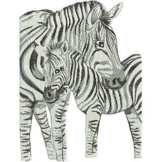LR_Zebras_MomAndBaby6x8