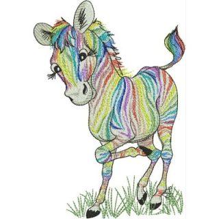 LR_Zebras_RainbowZebra6x8