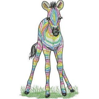 Lr_zebras_babyrainbow6x8