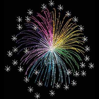 4OJ_Fireworks11_4x5