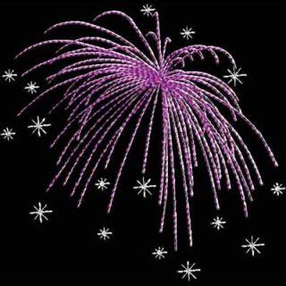 4OJ_Fireworks12_4x5
